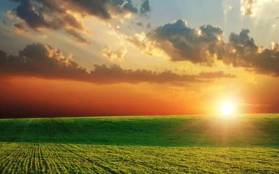 Atividade Rural: Entenda o enquadramento previdenciário
